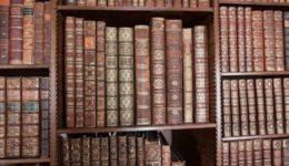 bookshelf sm