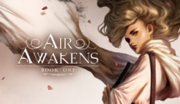 Air Awakens Banner Large