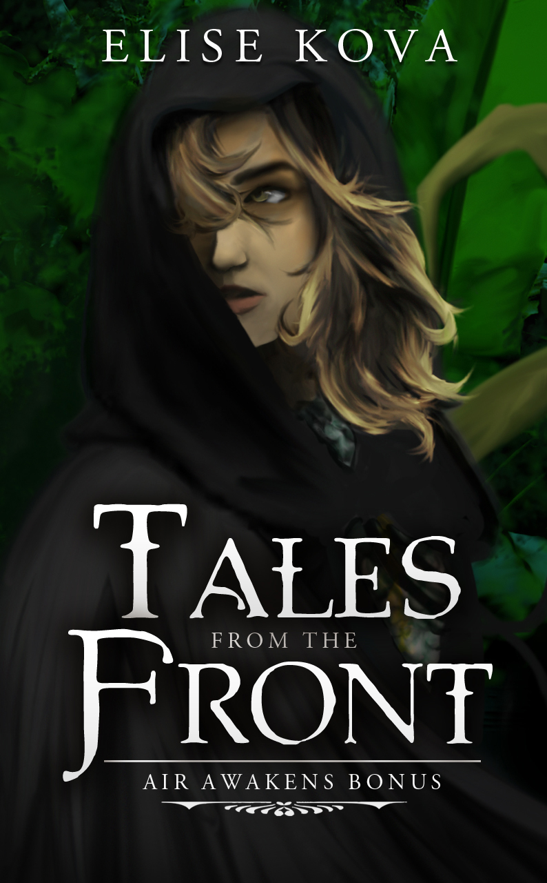 Tales from the Front, An Air Awakens Bonus